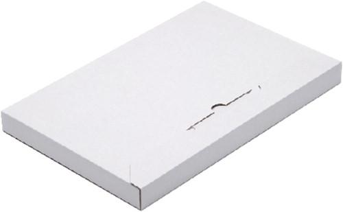 BRIEVENBUSBOX BUDGET A4 350X230X29MM WIT 1 Stuk